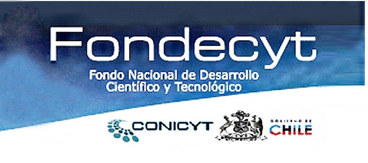 UDP, FACSO y FLACSO-Chile se adjudican proyecto FONDECYT